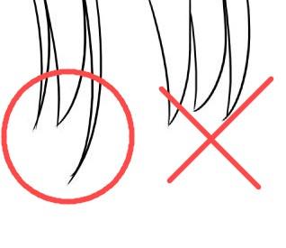 髪の束の違い