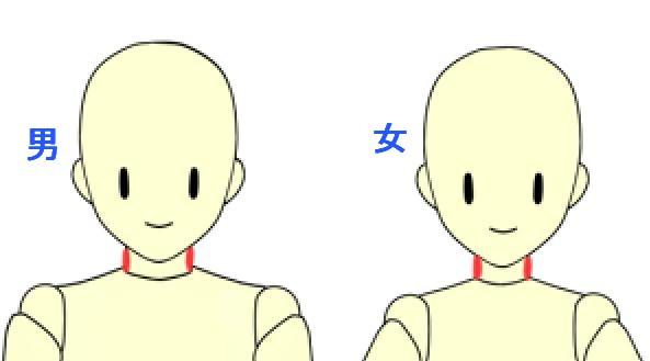 男女の首の差