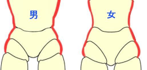 男女の胴から腰